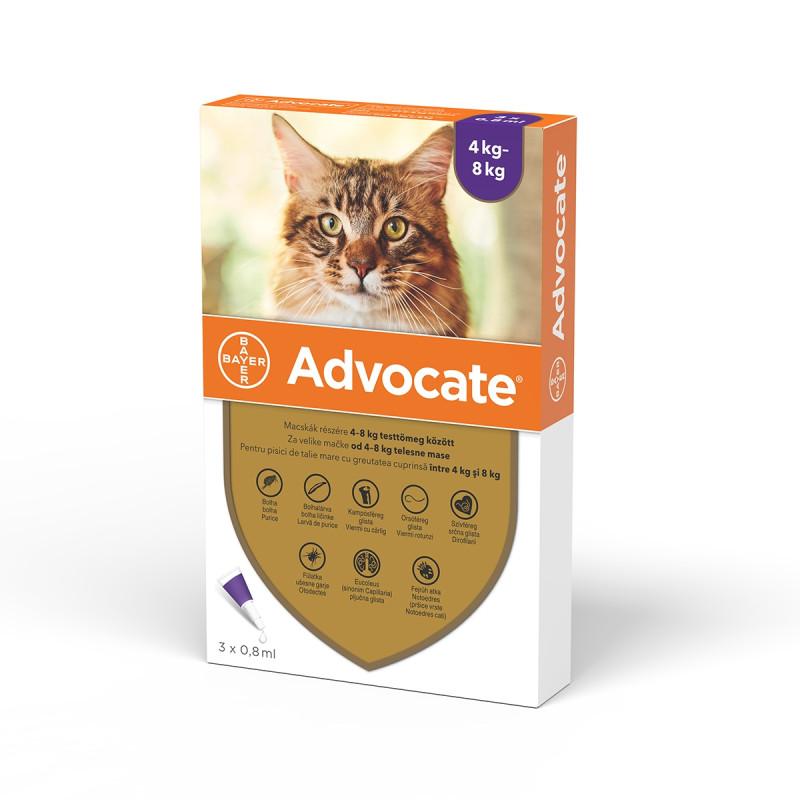 Advocate Pisica 4-8 Kg 1 Pipeta