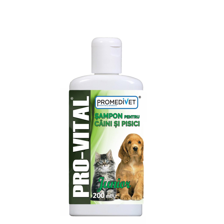 Şampon Pro-Vital Junior pentru câini şi pisici 200ml shop4pet.ro