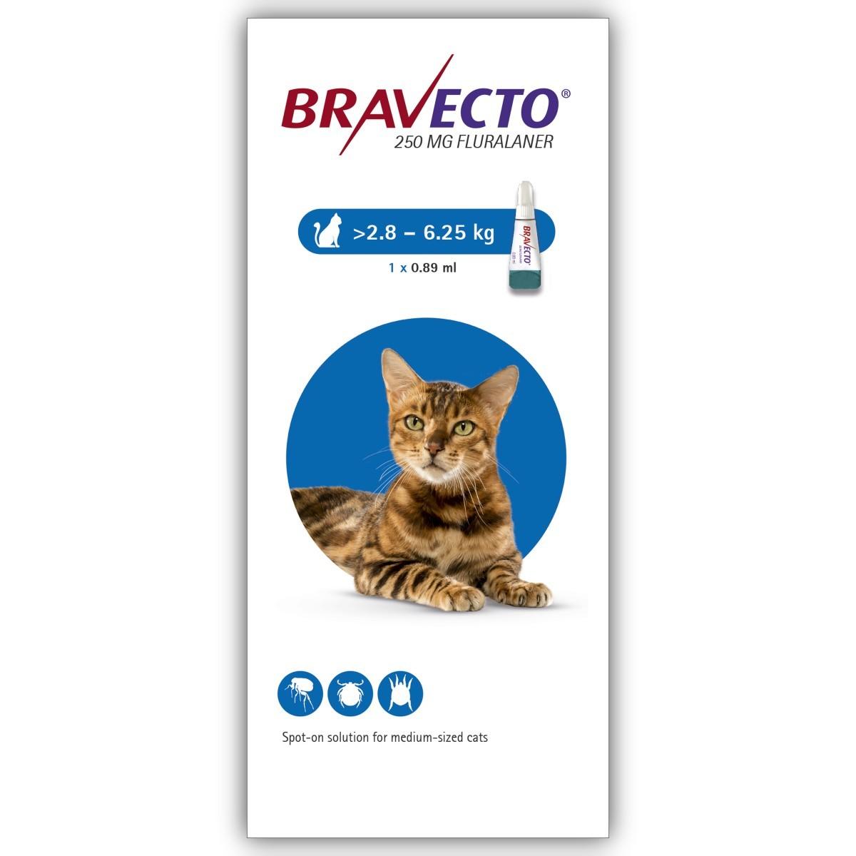 Bravecto Spot On Pisica 2.8-6.25 kg X 1 Pipeta shop4pet.ro